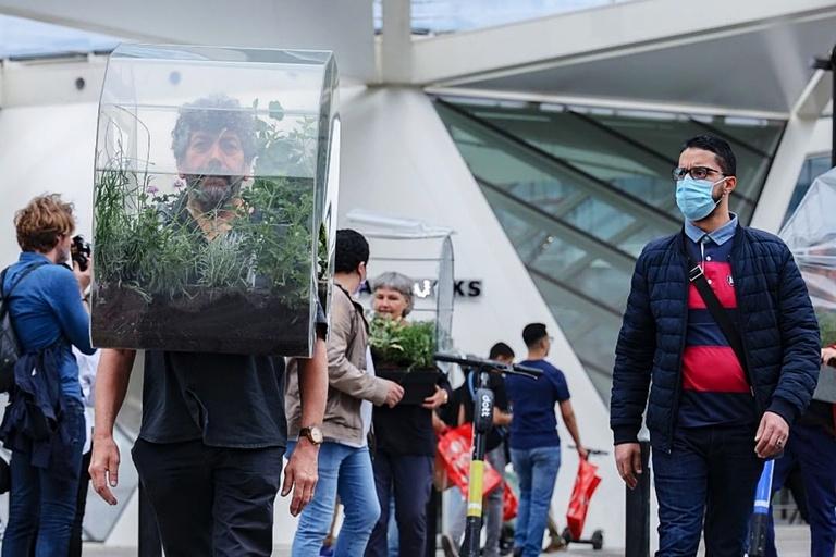 Greenhouse Mask COVID Oasis