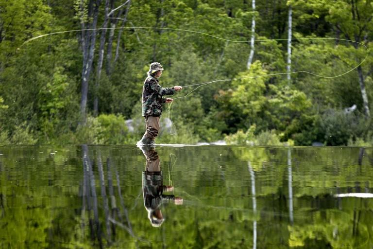 fly fishing declining population