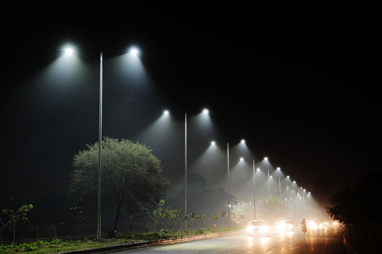 Streelights harm animals, insects